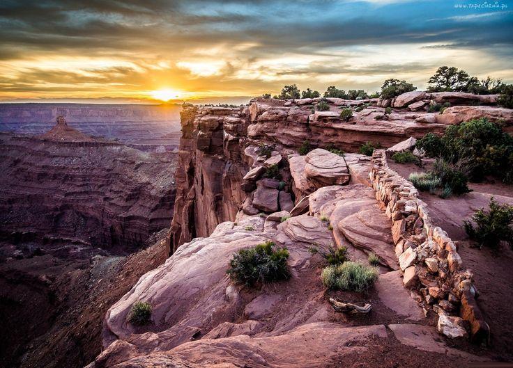 Zachód słońca, Kanion, Drzewa