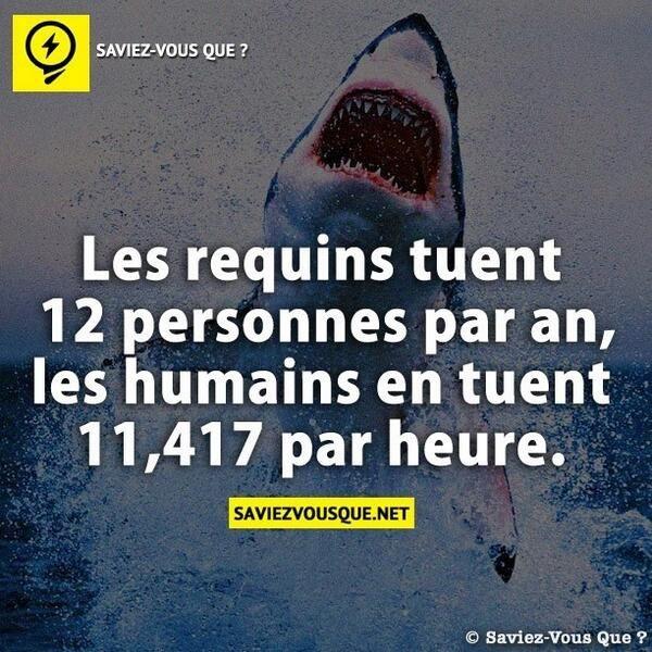 Tweets de Media par La Carotte Masquée (@Madame_Carotte) | Twitter