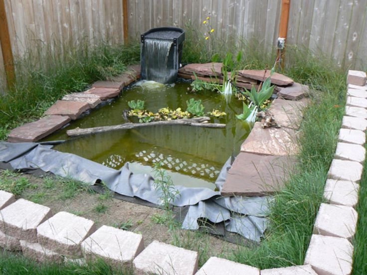 Pin by kim sonderman on outside living pinterest Diy indoor turtle pond