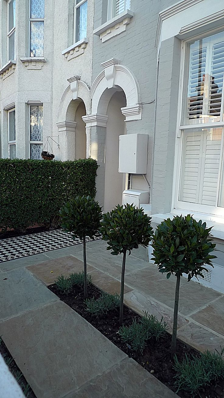 front garden ideas victorian home. like the topiary and little set back from house wall. front garden victorian black white mosaic tile path sandstone paving formal ideas home i