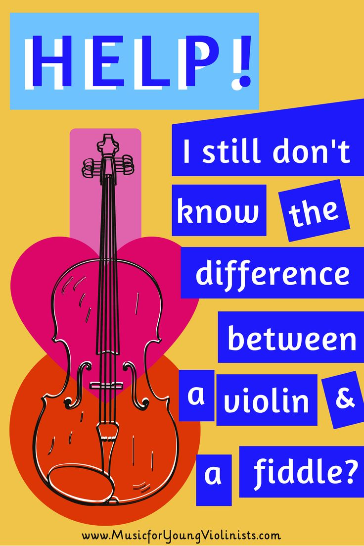 Difference Between Studio And One Bedroom: 7 Best Cedric Celery's Violin Adventures Images On