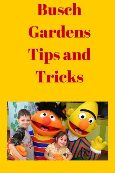 Dc Local Busch Gardens Discount Tickets And Tips To Save