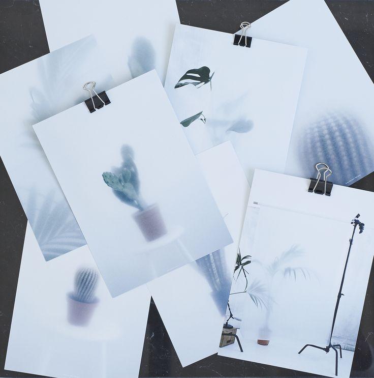 Botanical Postcards - Kristina Dam Studio