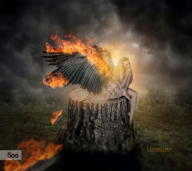 Wings Burn by Lapanlima on 500px