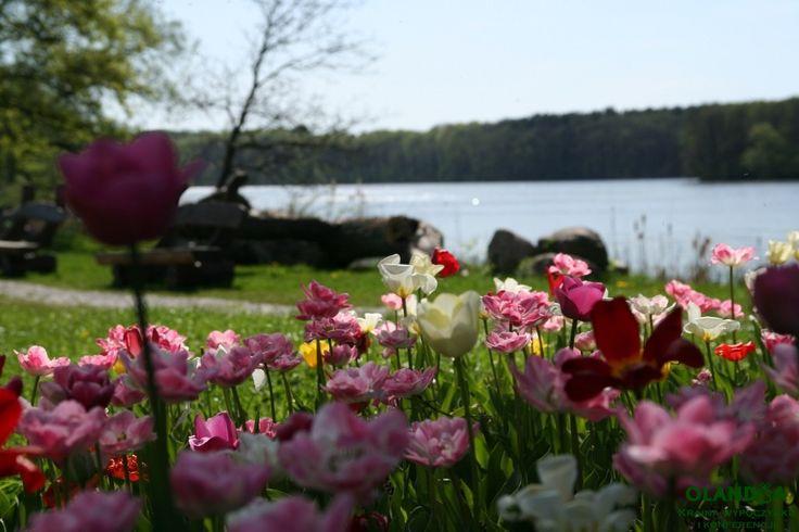 amazin view!  #Poland is beautiful http://www.olandia.pl WELCOME!