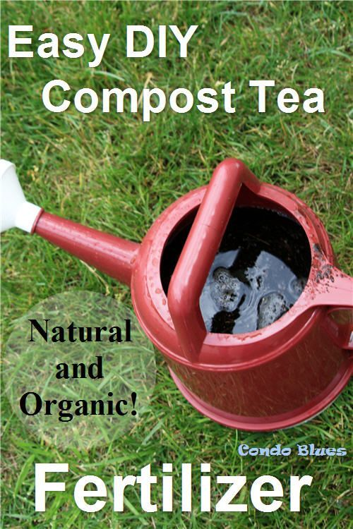 How to make and brew compost tea the easy way for an all natural and organic garden plant fertilizer
