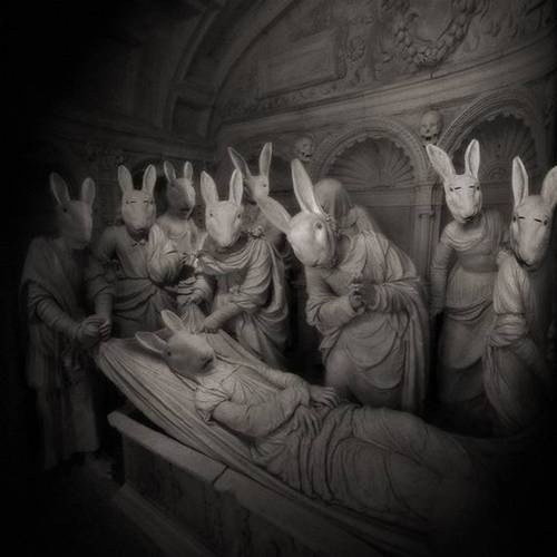 mourning bunnies