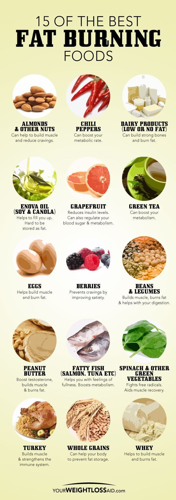 15 Of The Best Fat Burning Foods food healthy weight loss health healthy food healthy living eating fat loss metabolism weight loss tips