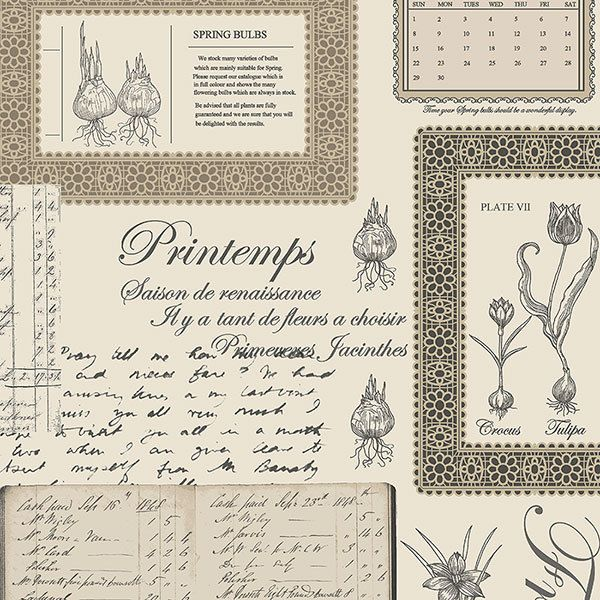 Wallpaper Inn Store - Spring Bulbs with Script Wallpaper, R699,95 (http://shop.wallpaperinn.co.za/spring-bulbs-with-script-wallpaper/)