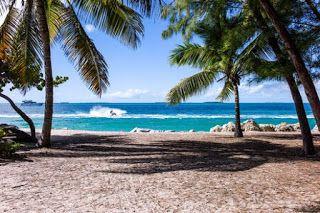 Urlaub heute buchen und sparen: Dein eigenes Online Reisebüro eröffnen in 5 Minute...