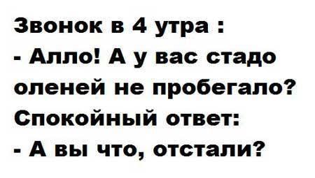 12924366_241872402822684_152357710781581459_n.jpg (450×255)