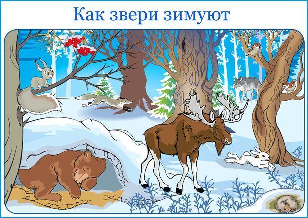 A plakát mint az állatok téli álmot alszik