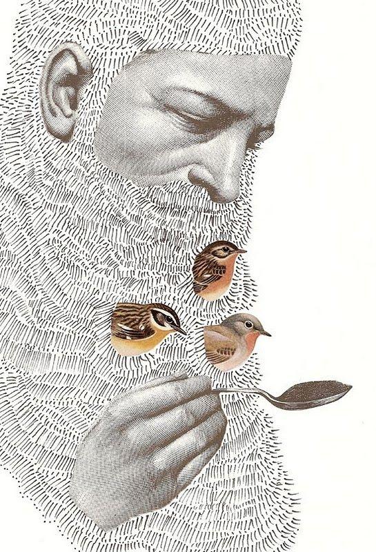 Birdy Beardy