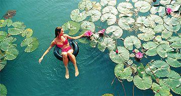 Heviz at Lake Balton, warm Thermal water all year around