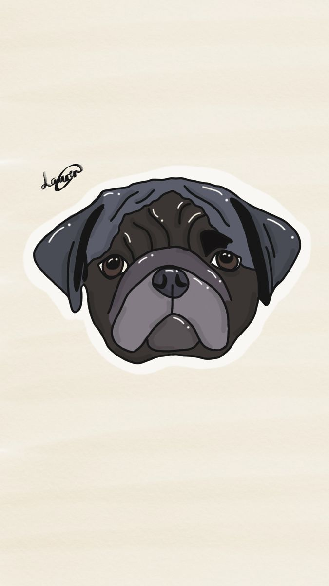 Laurencook91 Shop Redbubble Dog Artwork Digital Drawing Pug Artwork
