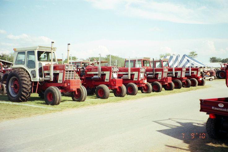 International 1468s & 1568s V-8s lined up