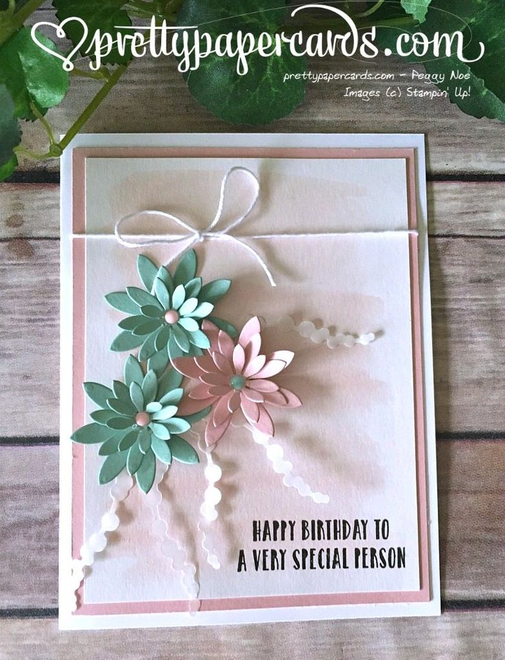 Oh So Succulent! - Pretty Paper Cards