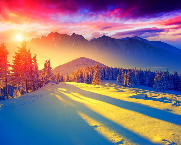 зима, снег, горы, солнце, рассвет, ели