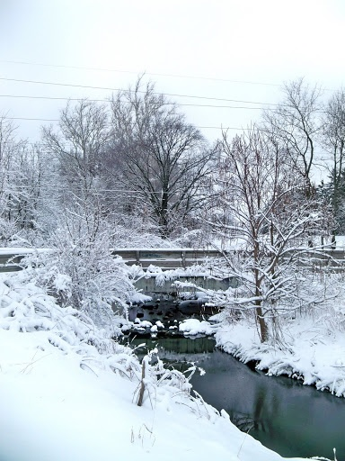 1000 images about snow in ohio on pinterest ohio snow and ohio