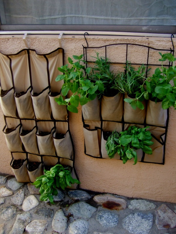 1000 ideas about apartment herb gardens on pinterest for Balcony jungle