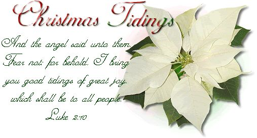 http://greetingscraps.disk9.com/orkut/123%20greetings%20scraps%20ecards/Animations/Merry%20Christmas/hh258/Ms_Belleza/Christmas/white.gif