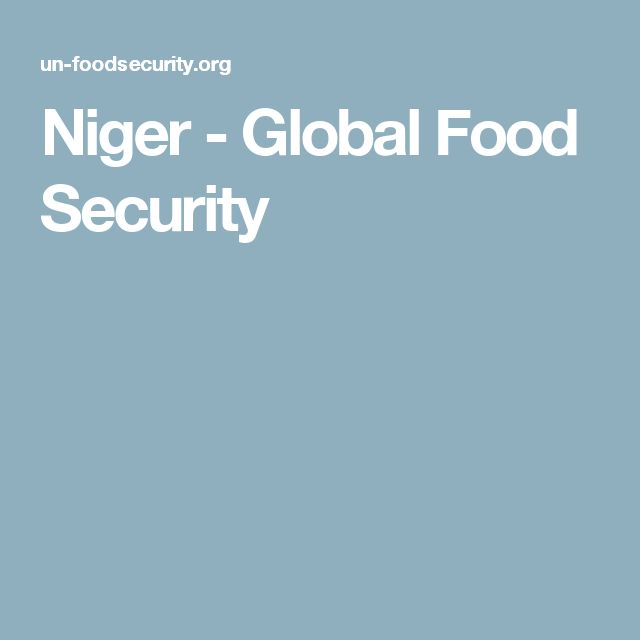 Niger - Global Food Security