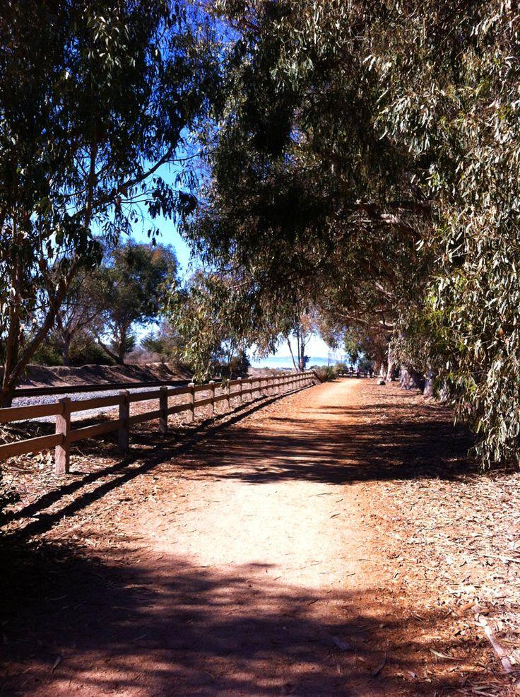 Trail to the seal sanctuary in Carpinteria, California