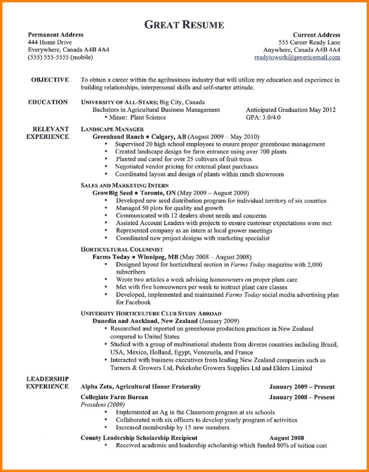 best resume samplest examples inspire you how make the resumes security guard sample samples