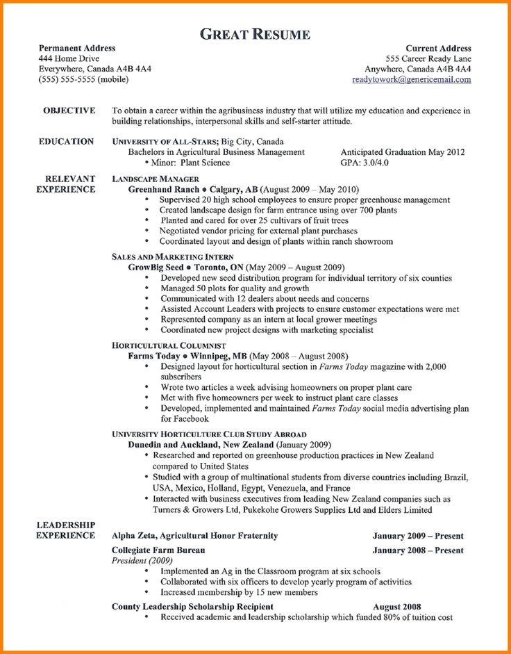 security guard sample resume