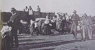 Boer War Concentration Camp Train SCALE OF RATIONS FOR REFUGEES AND UNDESIRABLES Bloemfontein Camp, Orange River Colony Refugees ½ lb. Fresh Meat. ½ lb. either Meal, Rice, Samp or Potatoes. 1 ½ oz. Coffee. 3 oz. Sugar. 1 oz. Salt. 1/12 th tin of Condensed Milk 	 Undesirables ½ lb. Fresh Meat ½ lb. either Meal, Rice, or Samp 1 ½ oz. Coffee 1 oz. Sugar 1 oz. Salt 1/18 th tin of Condensed Milk Table from 'The Brunt of the War and Where it Fell' Emily Hobhouse 1902