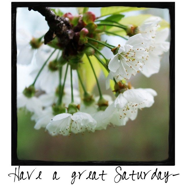 Have a great Saturday! Come by and visit A Warm Hello!
