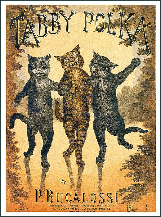 Tabby Polka sheet music with 3 cats on cover