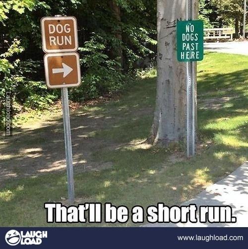 hahahahaha i don't know why i find this so funny...