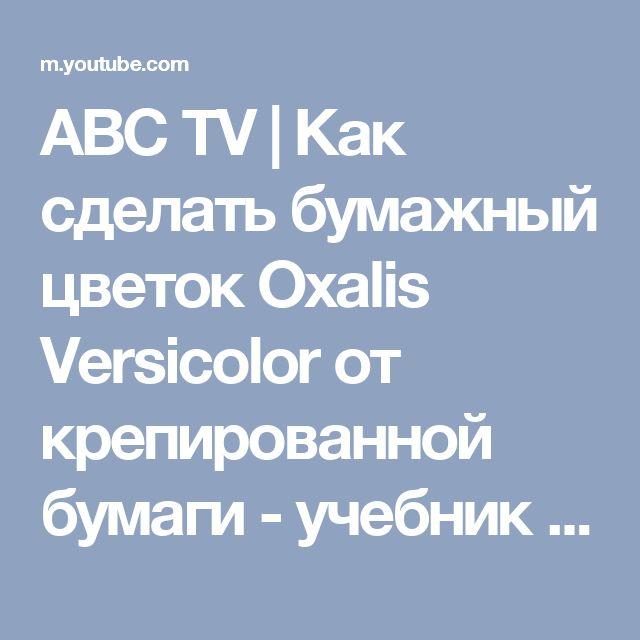 ABC TV | Как сделать бумажный цветок Oxalis Versicolor от крепированной бумаги - учебник по ремеслу - YouTube