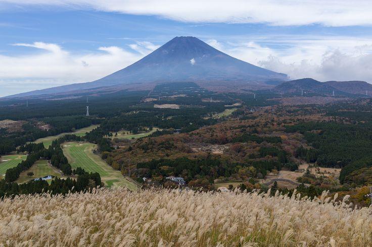 https://flic.kr/p/zww9vN | East of Mt.Fuji | Mt.Fuji from Jurigi 十里木から見た富士山  This place is the lower of trekking route to Mt.Echizen. Pampas grass can be seen this season.  県道から15分ほど登ったところにある展望台より。 この後方は越前岳(愛鷹山)の登山ルートとなります。 過去に何度か掲載しましたが、 この時期ススキがいっぱいみられます。  Fuji city, Shizuoka pref, Japan