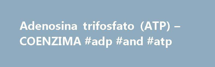 Adenosina trifosfato (ATP) – COENZIMA #adp #and #atp http://ireland.nef2.com/adenosina-trifosfato-atp-coenzima-adp-and-atp/  # COENZIMA .COM La adenosina trifosfato (abreviado ATP, y también llamada adenosín-5′-trifosfato o trifosfato de adenosina) es una molécula utilizada por todos los organismos vivos para proporcionar energía en las reacciones químicas. También es el precursor de una serie de coenzimas esenciales como el NAD+ o la coenzima A. El ATP es uno de los cuatro monómeros…