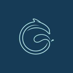 10 best dolphin logo images on pinterest dolphin logo