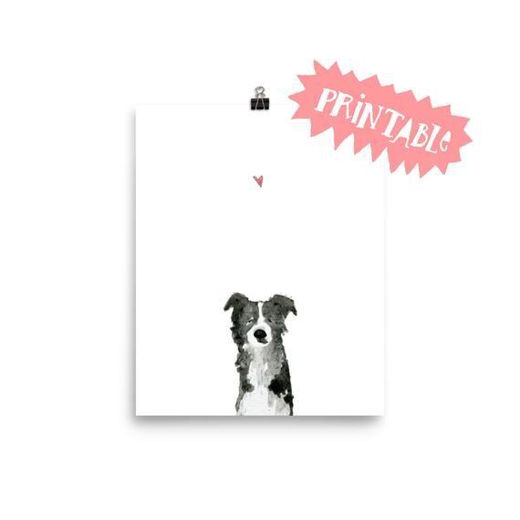 Border Collie Printable Art, Border Collie Wall Art, Border Collie gift, Pet por… – Products