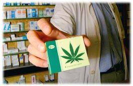 mariuna in farmacia