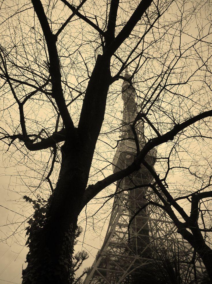 東京タワー♪ロック聞きながら加工したらこんなカラーにw