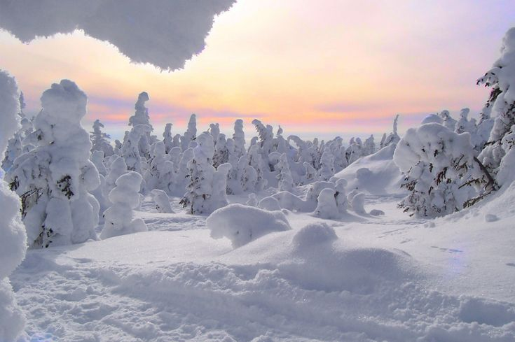Vallée des Fantômes, parc national des Monts-Valin                                                                                                                                                                                 Plus
