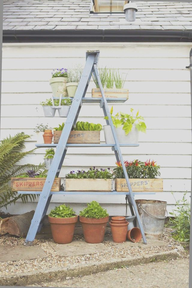 35 Diy Plants Stand Ideas Inspiration For You Small Space Gardening Ladder Planter Tiered Garden
