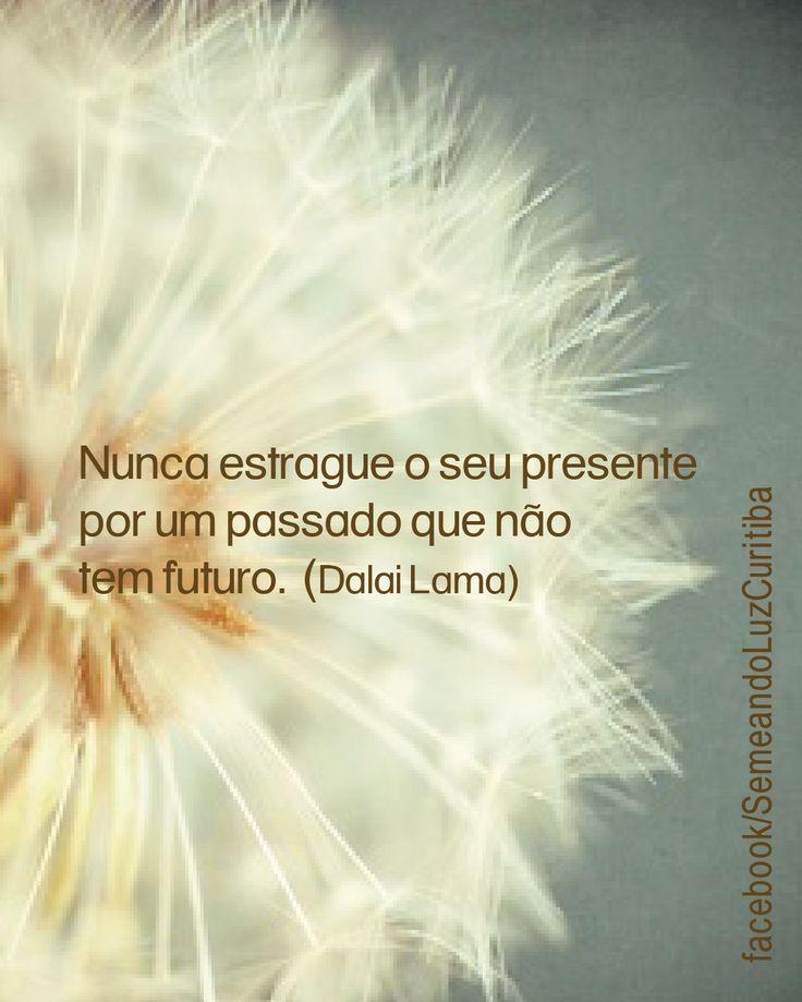 """""""Não estrague o seu presente por um passado que não tem futuro"""". Dali Lama"""