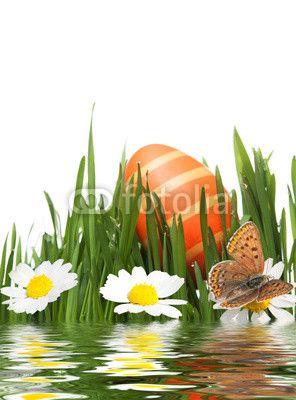 Osterei im Gras mit Wasserspiegelung