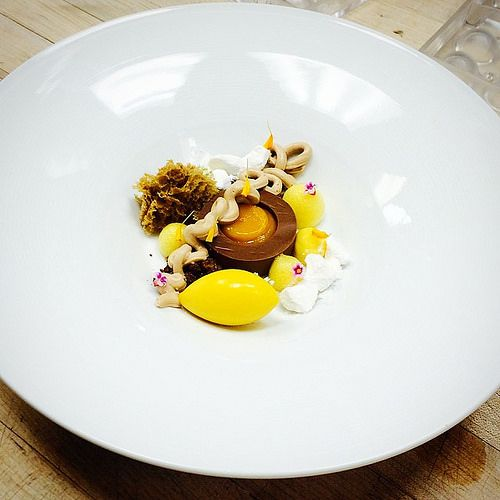 Chocolate Ganache, mango pudding, Hazelnut whipped Panna Cotta ...
