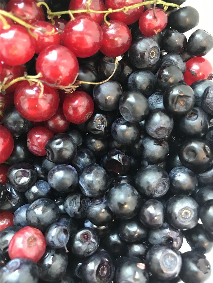 Blueberries VSCO A6