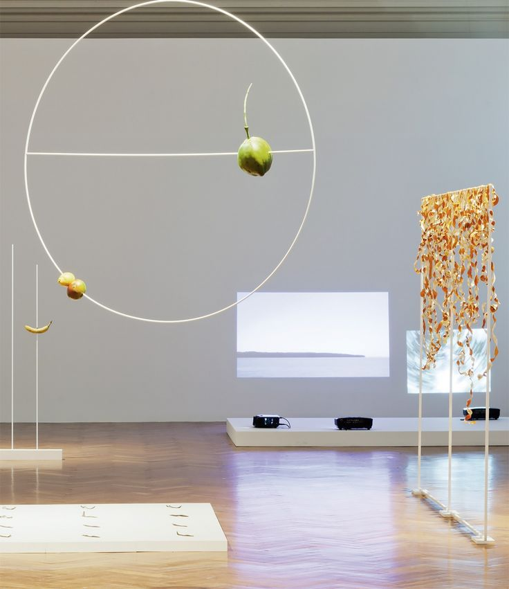 Diango Hernández. Layout for Flavor Orbit and Orange Curtain, 2014 (Installation view form 'Socialist Nature'. Landesgalerie, Linz)