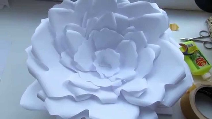 A_R  DIY:Большие цветы из бумаги для декора!)