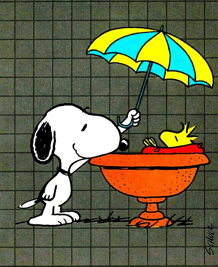 Snoopy protege o Woodstock do sol ou da chuva!