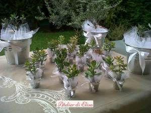 Bomboniere vasetti latta con piante